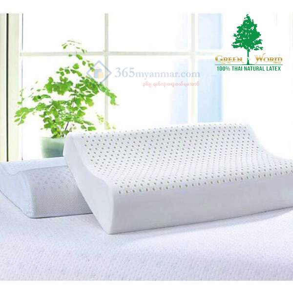 Green World Contour Standard, Pillow (Code - PCS